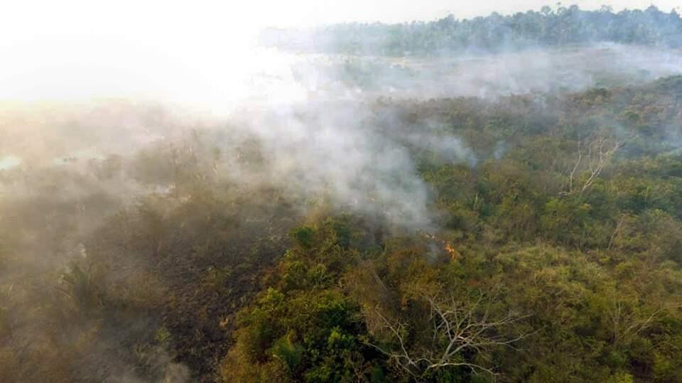 MPF vai à Justiça contra sistema que limita ação de fiscais do Ibama na Amazônia