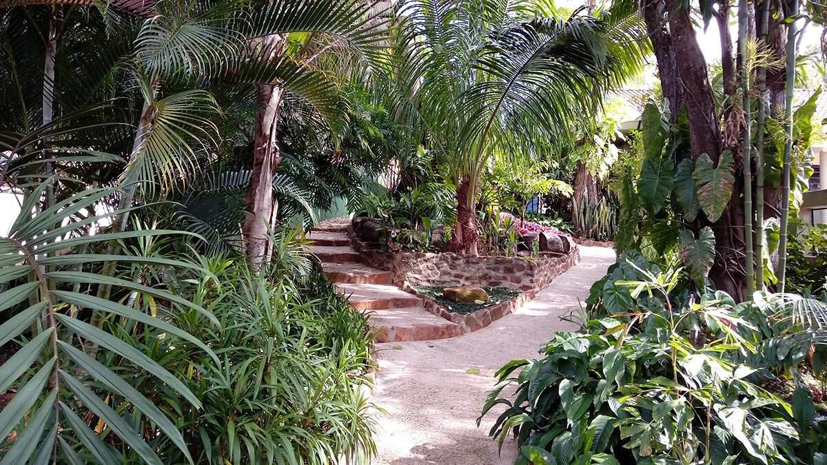 A beleza e a importância da jardinagem