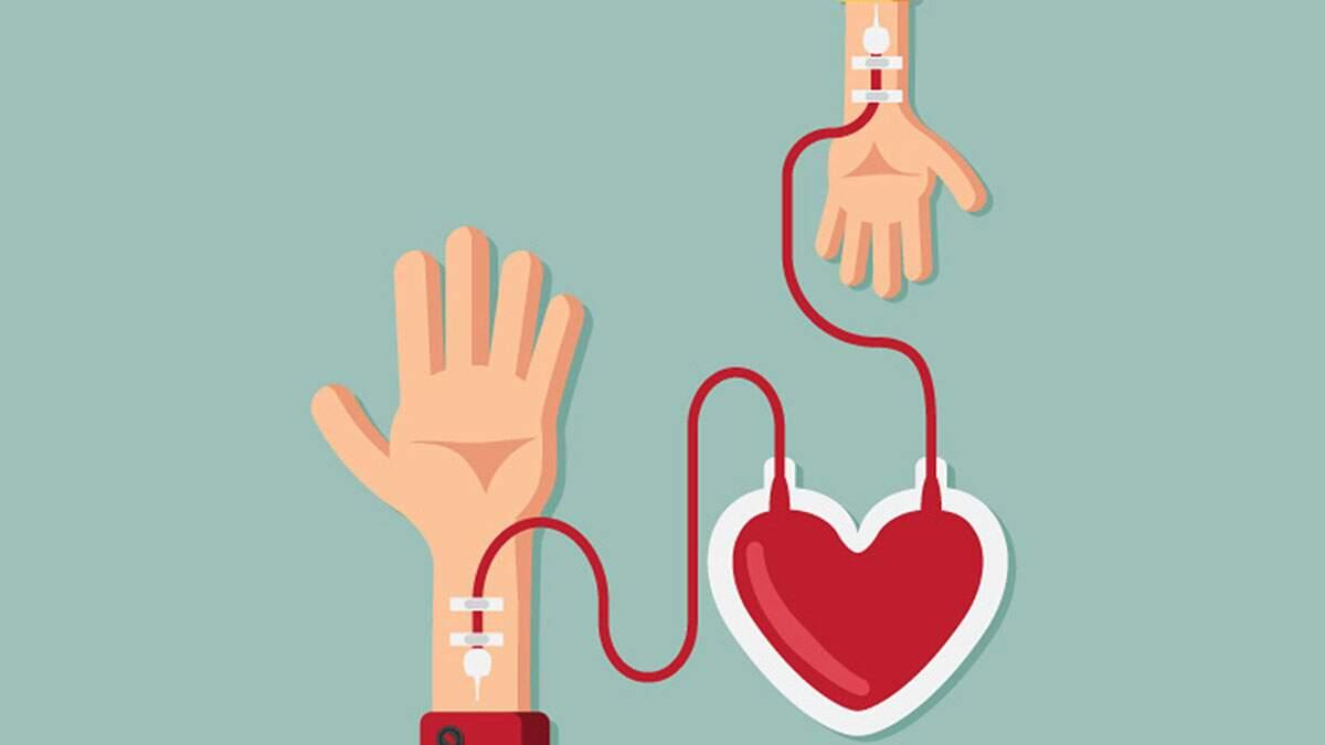 Tire dúvidas sobre doação de sangue