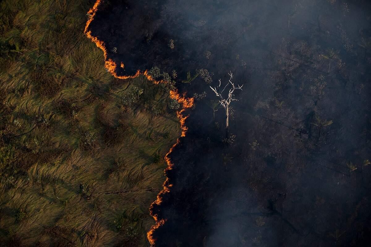 Defesa usará verba da Lava Jato destinada à Amazônia para satélite de R$ 577 mi