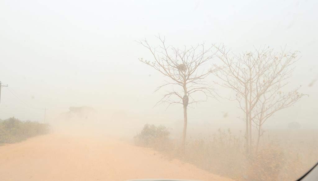 Pecuaristas contabilizam prejuízos com incêndios no Pantanal