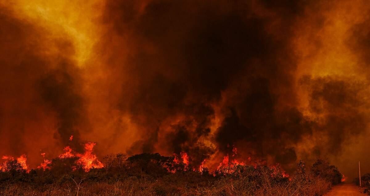 Rede vai ao STF para que governo envie força contra fogo no Pantanal e Amazônia