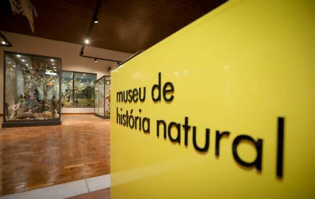 Museu de História Natural é repaginado e reabrirá no dia 6 em Campinas