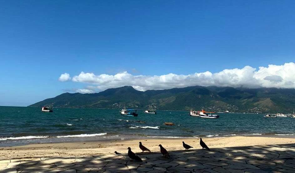 Contra Plano SP, cidades do litoral norte liberam comércio, marinas e igrejas