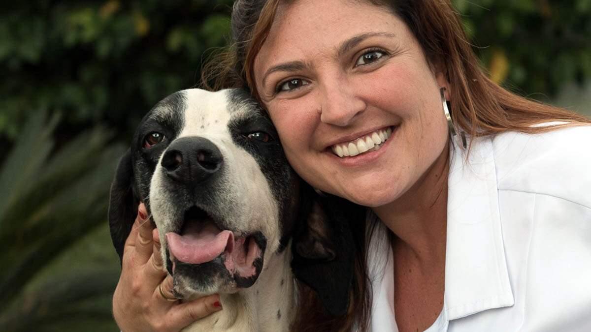 Entenda a importância da terapia com células tronco em cães e gatos