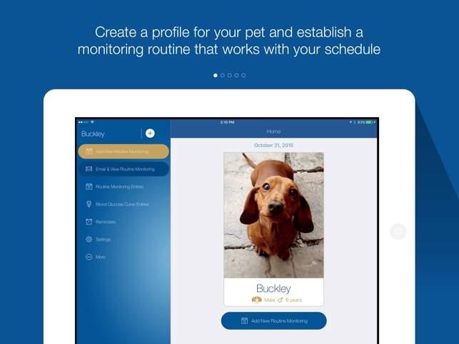 Aplicativo gratuito promete monitorar e auxiliar tutores de pets com diabete