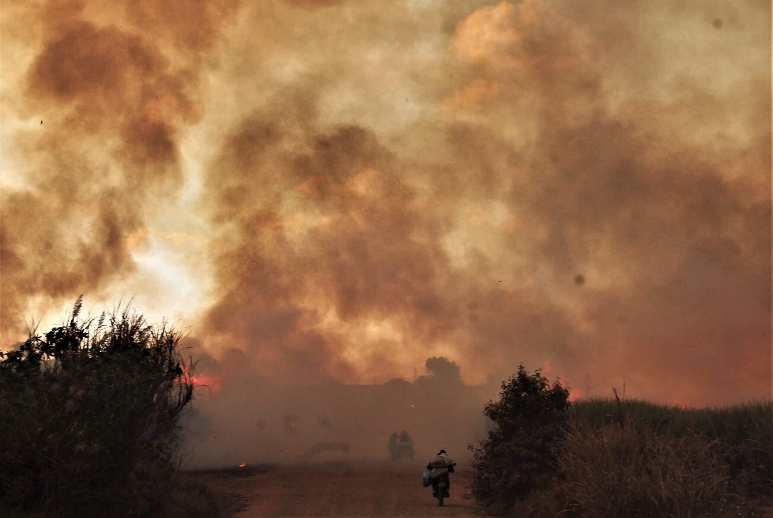 Raízen intensifica ações e iniciará monitoramento via satélite para combater queimadas